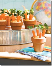 carrot-patch-photo-180-FF0908SNACK.A04