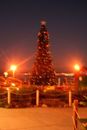 Christmas in Monterey California