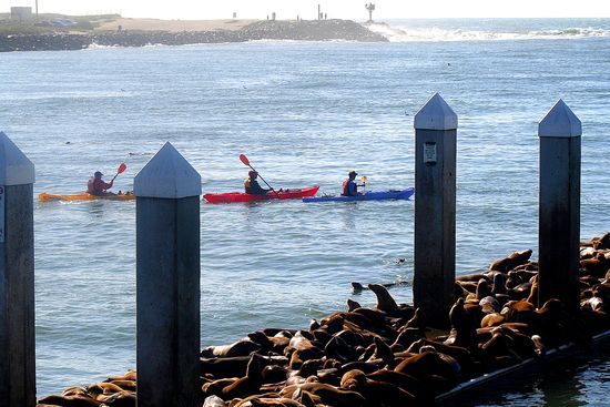 Kayaking at Moss Landing