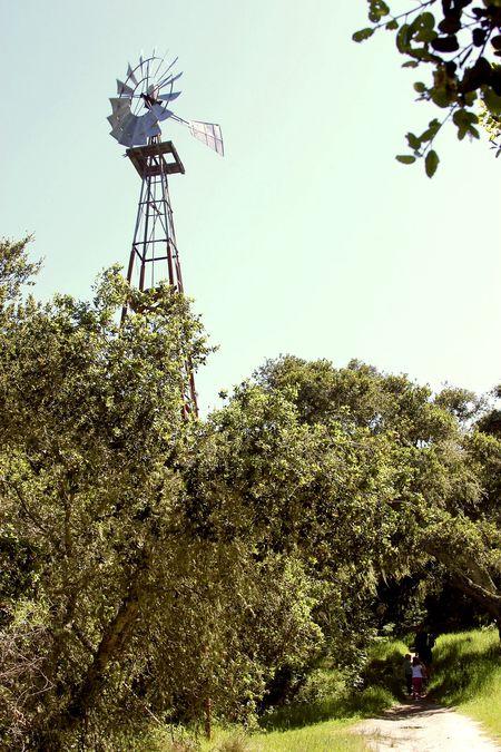 Toro Park Windmill