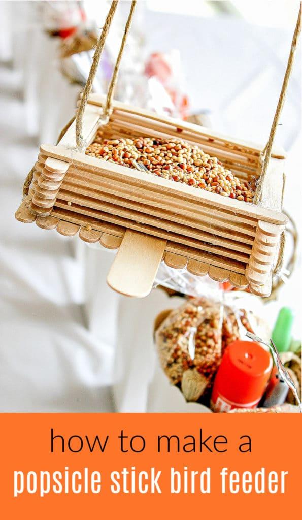 Popsicle stick bird feeder Pinterest image