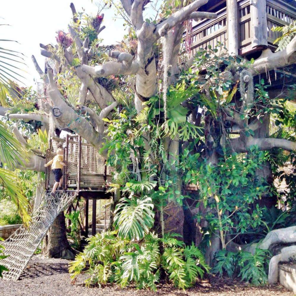 a natural jungle gym made from wood and plants for kids