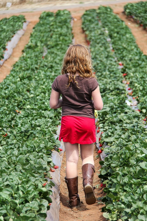 a girl walking through strawberry fields
