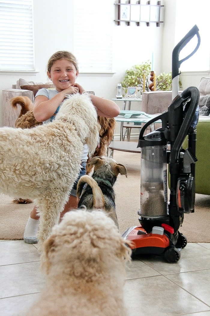 a girl playing with dogs with a vacuum cleaner nearby