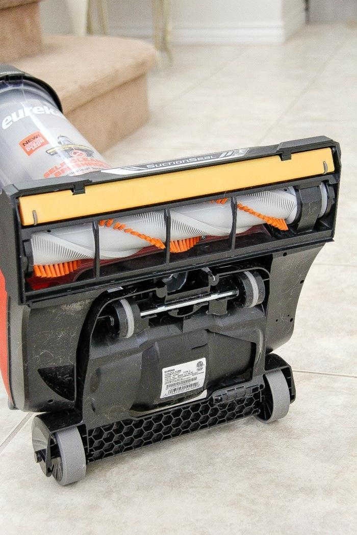 vacuum roller after vacuuming dog hair