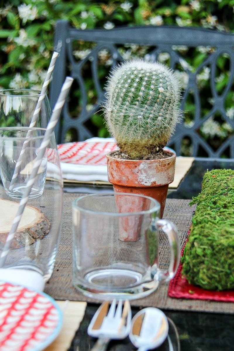 a small cactus, glassware and plates on an outdoor table