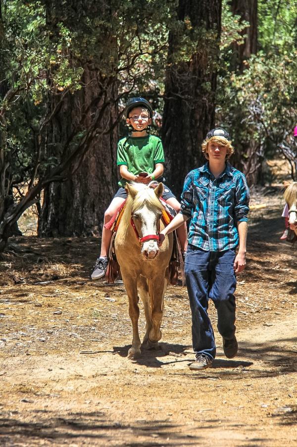 boy being lead around on a horse