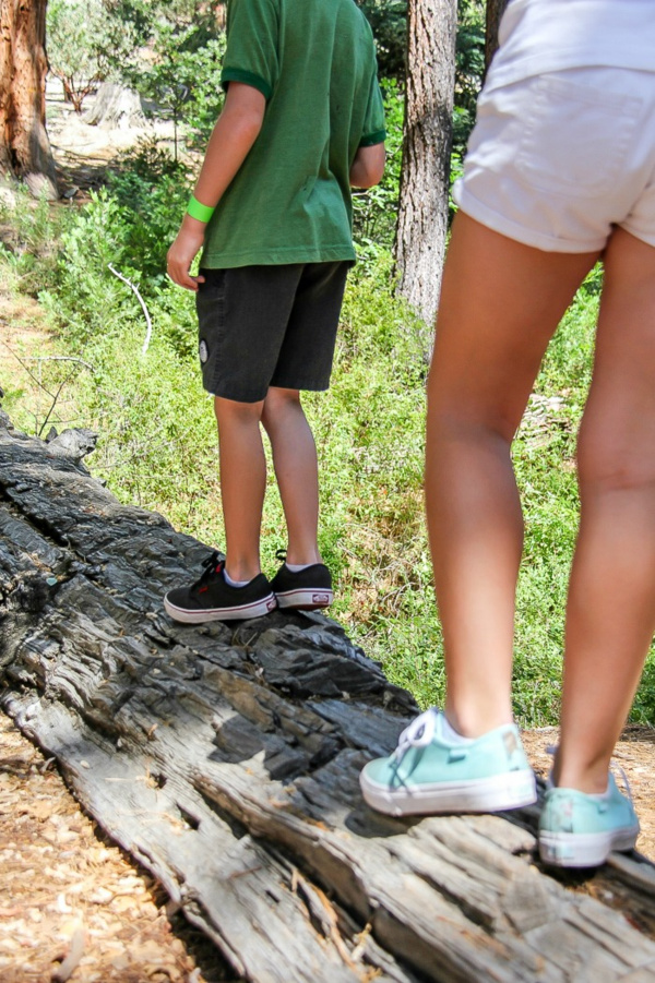 kids walking on a log