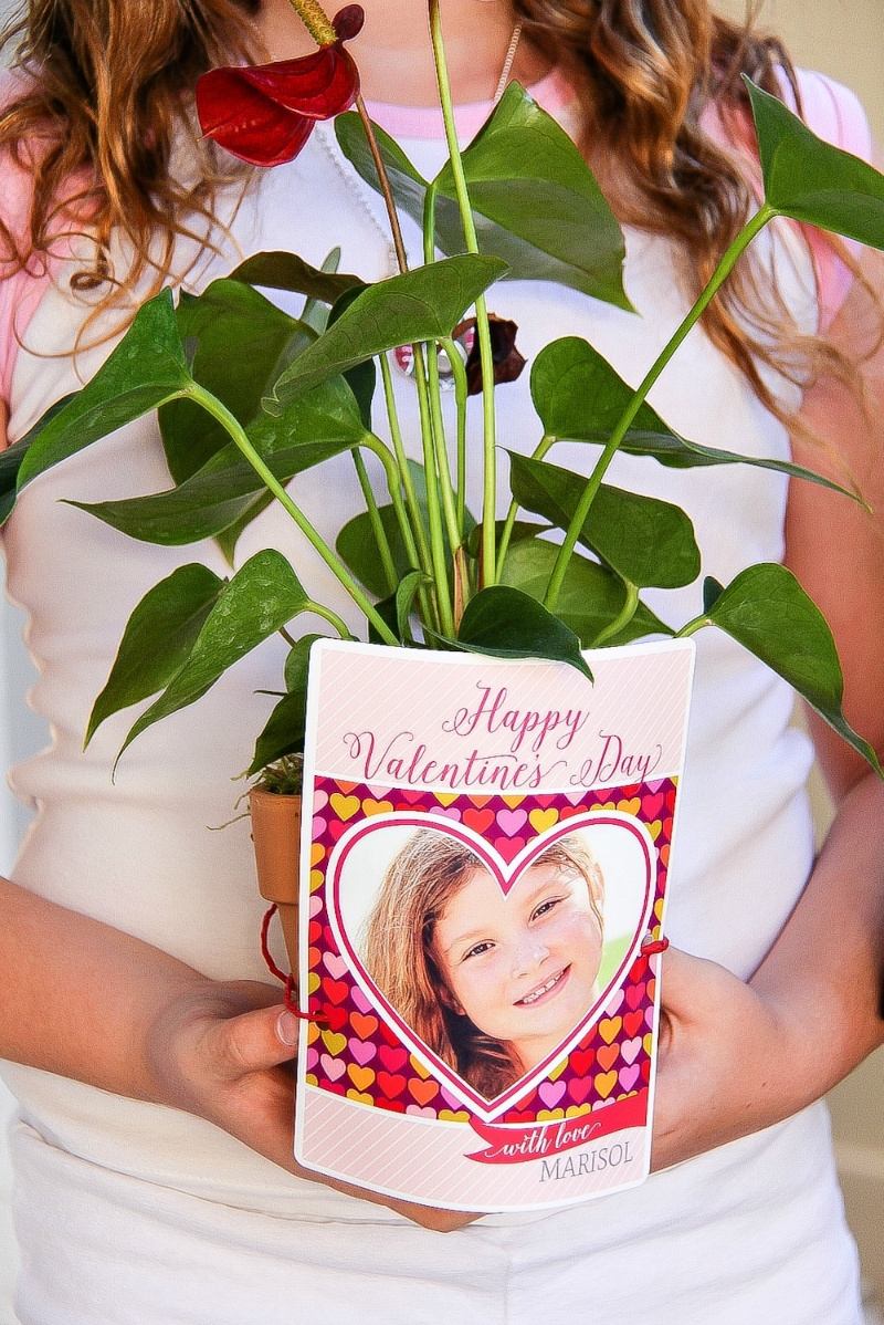girl holding a plant and valentines day card