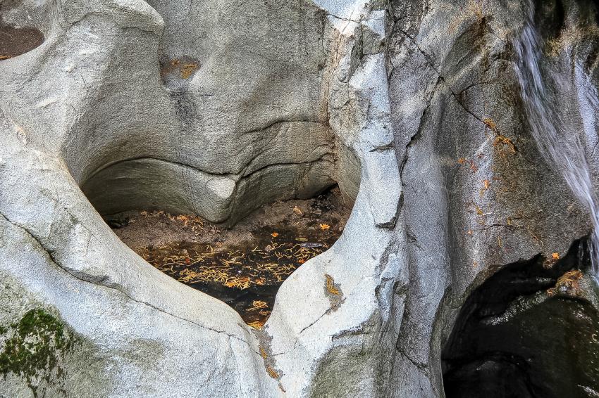a heart shape in a rock
