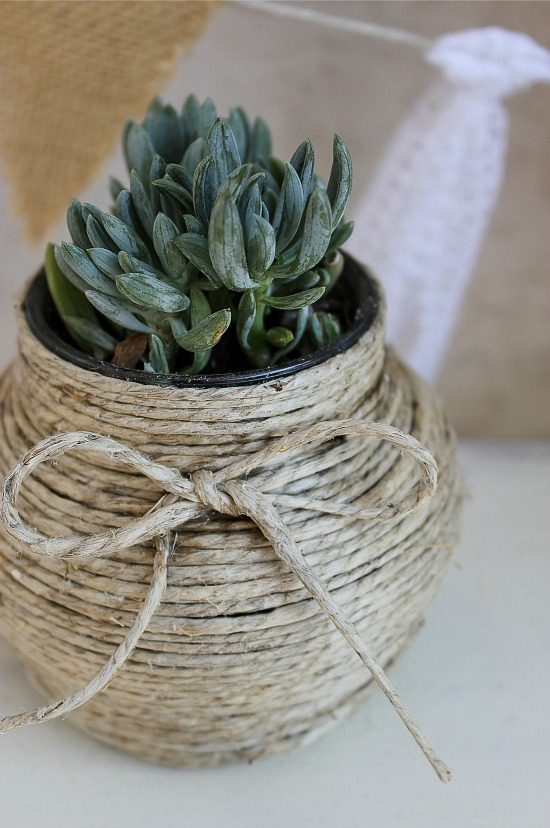 A jam jar wrapped in hemp cord and a succulent planted inside.