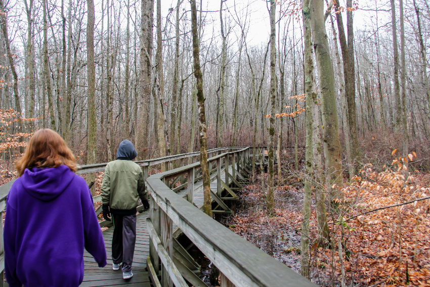 boy and girl walking along a boardwalk over a swamp surrounded by barren trees in winter in new jersey