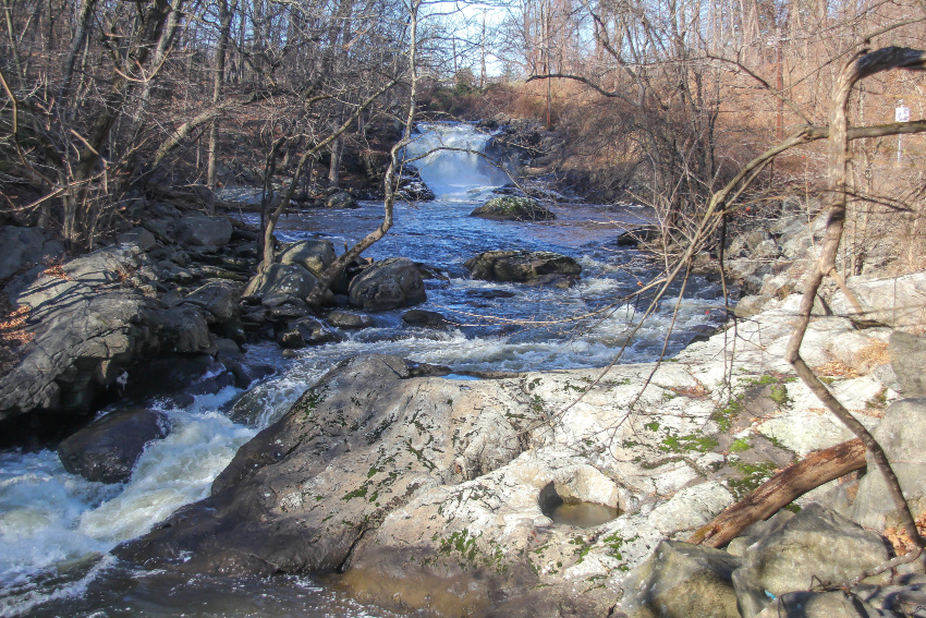 a waterfall and river flowing between barren trees and rocks