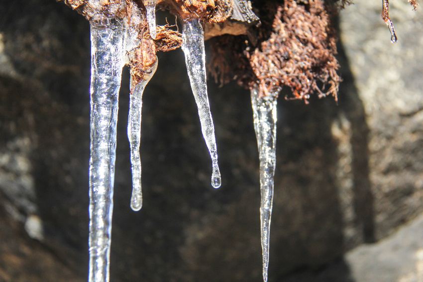icicles hanging off wood