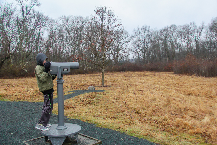boy observing wildlife through lens at the great swamp in new jersey
