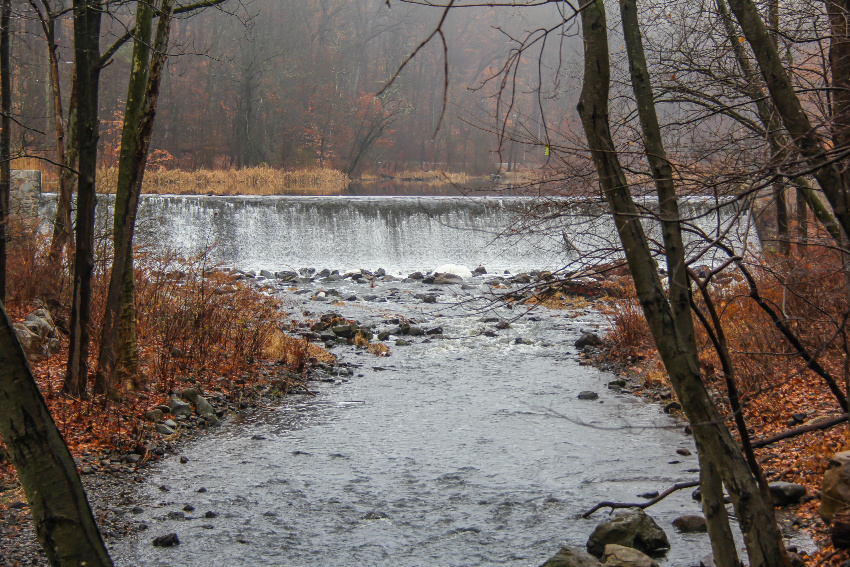 waterfall into the Rahway River in New Jersey surrounded by barren trees and red and orange foliage in winter