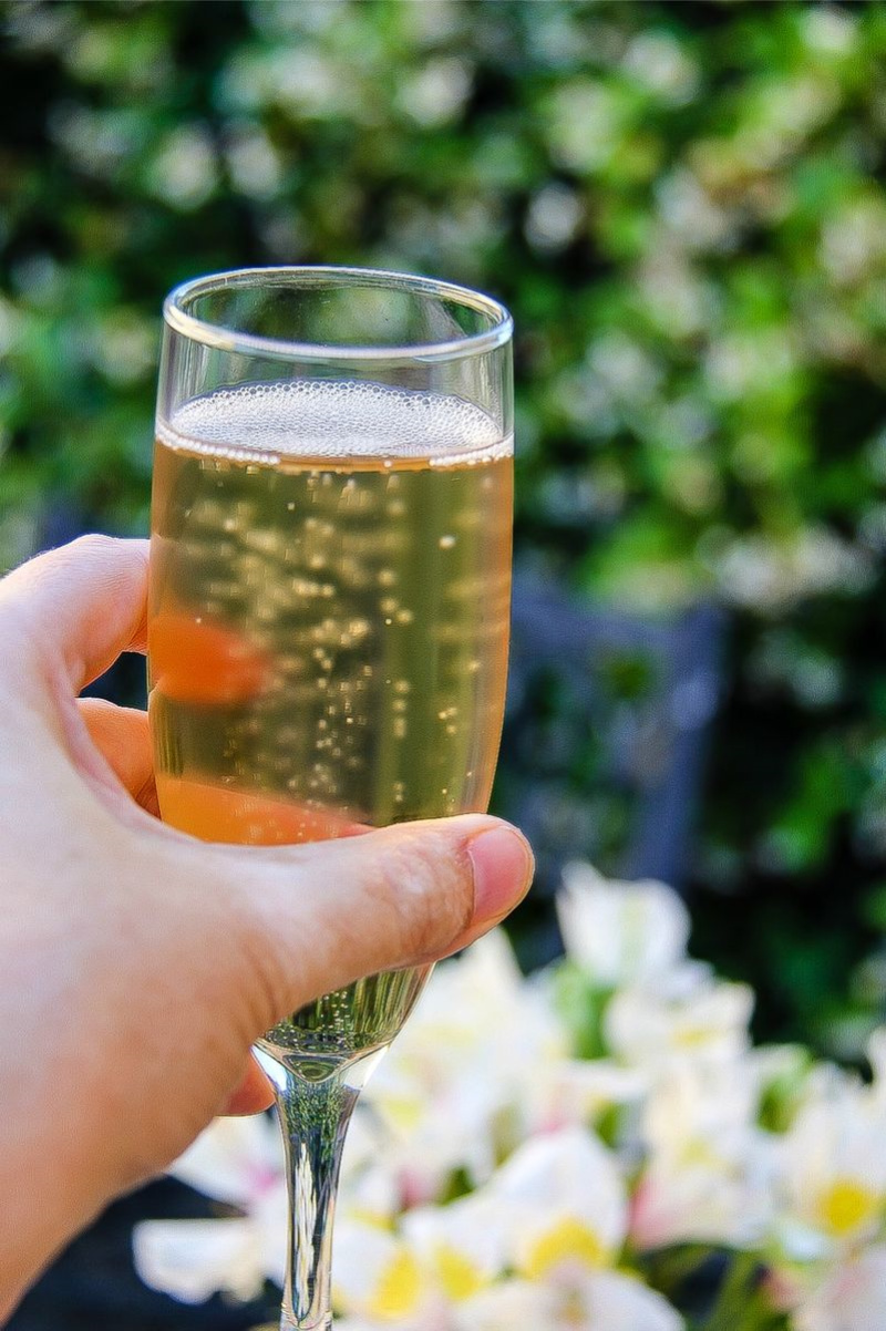 a hand holding a glass of sparkling wine