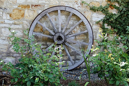 vintage wood wheel in a garden