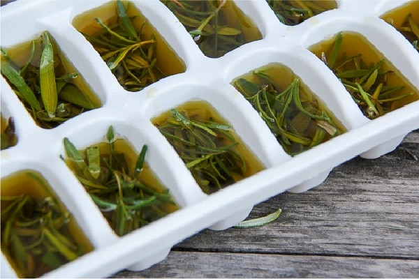 fresh rosemary and olive oil in a white ice cube tray