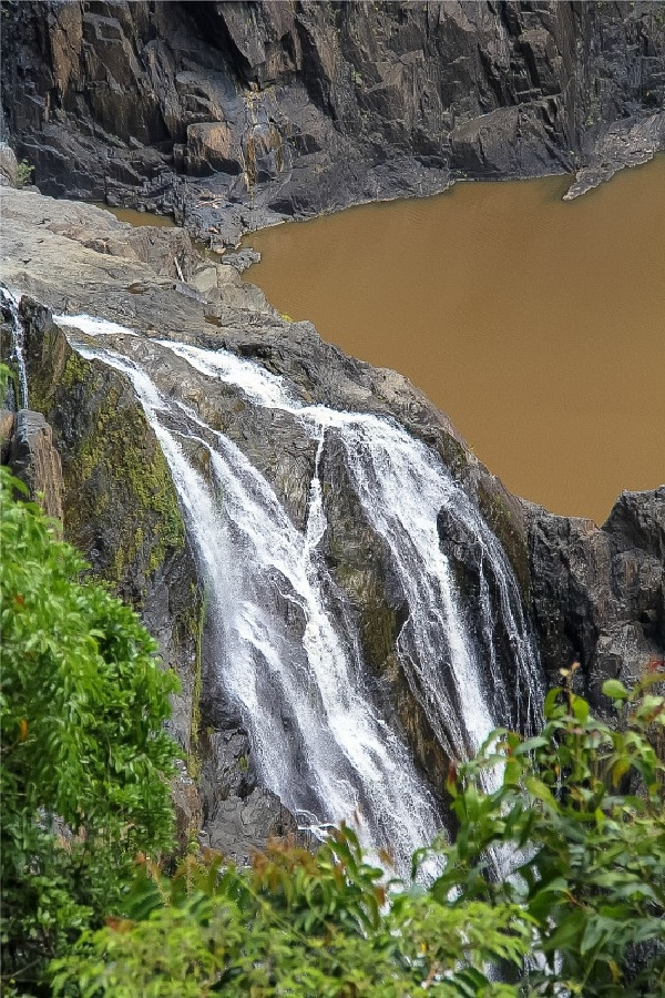 barron falls and a muddy pond in queensland