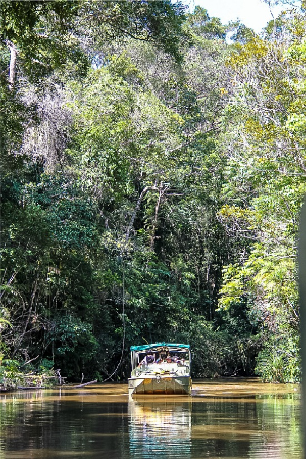 boat tour through Kuranda Rainforest