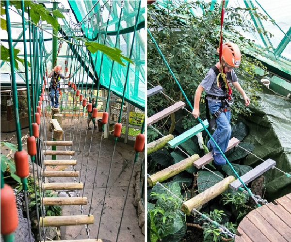 a boy doing the ropes obstable course at ZOOm dome in Cairns