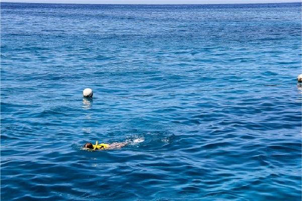 girl snorkeling great barrier reef