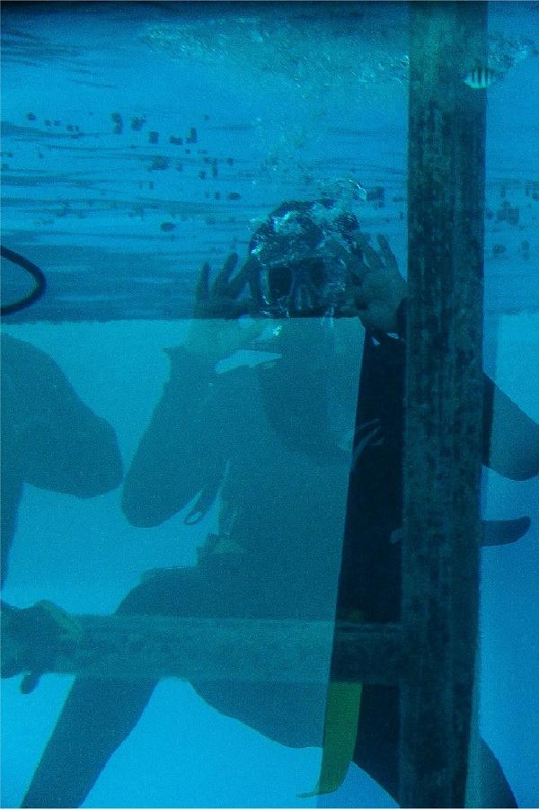 boy scuba diving in great barrier reef blue water
