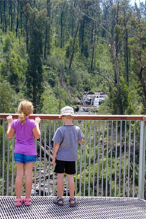 kids on an overlook looking at masons falls in kinglake national park