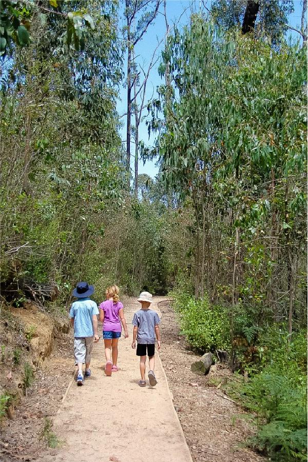 kids walking on a trail in kinglake national park australia