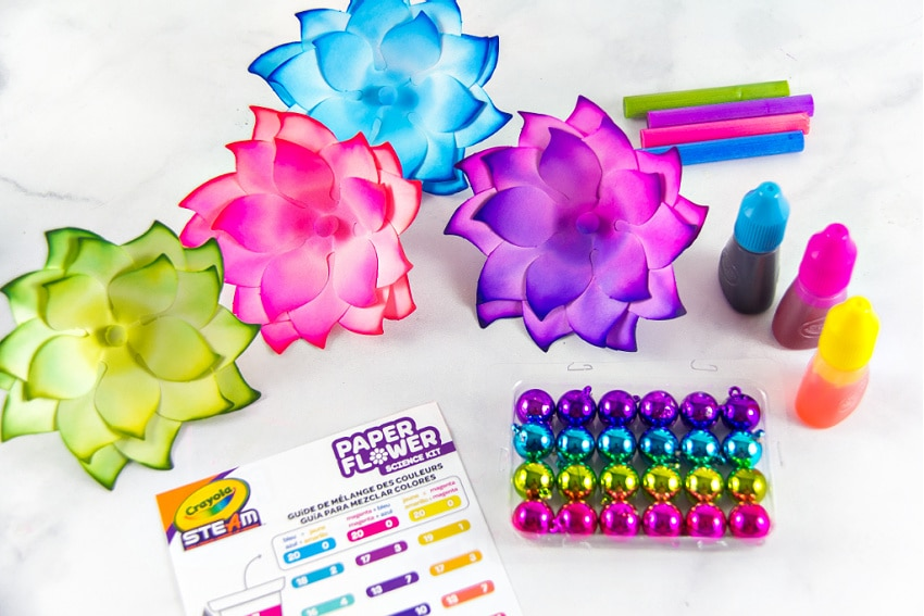 Instructions for using the Crayola paper flower science kit for kids.
