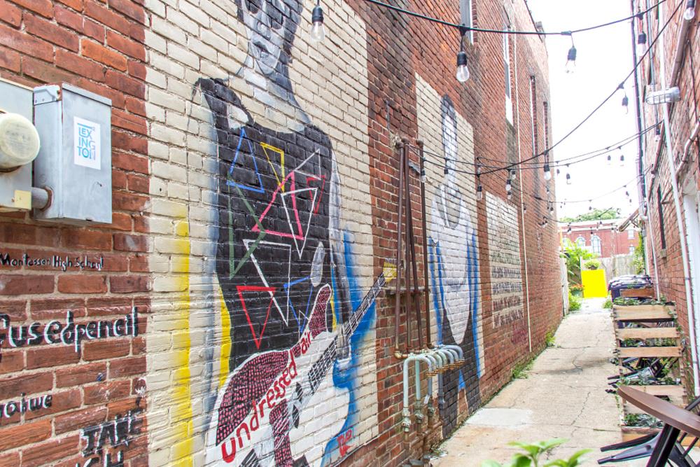 alley murals off north limestone in lexington