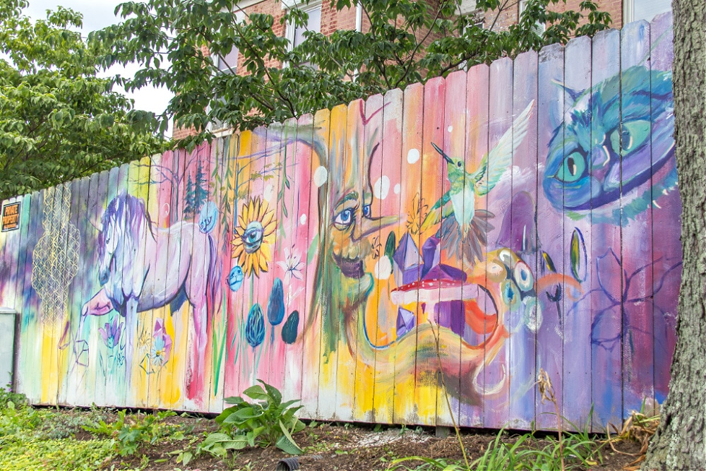 Street art on a fence on North Limestone in Lexington