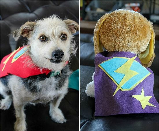 A small dog and a dog toy wearing handmade fleece super hero capes
