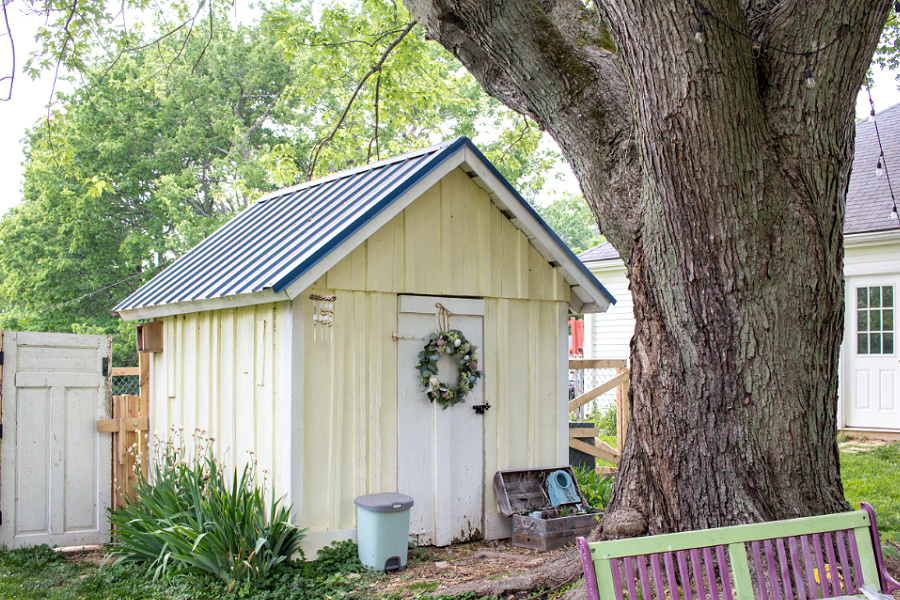 a yellow chicken coop converted from a garden shed
