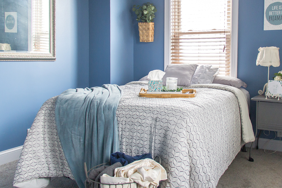 A blue, white, and grey guest bedroom with greenery.