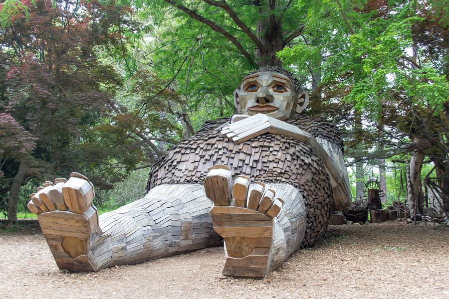 Mam Loumari forest giant at Bernheim