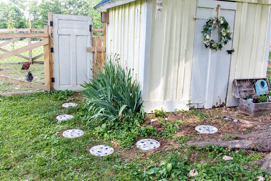 A concrete stepping stone garden path leading from a chicken coop door, to pen door.
