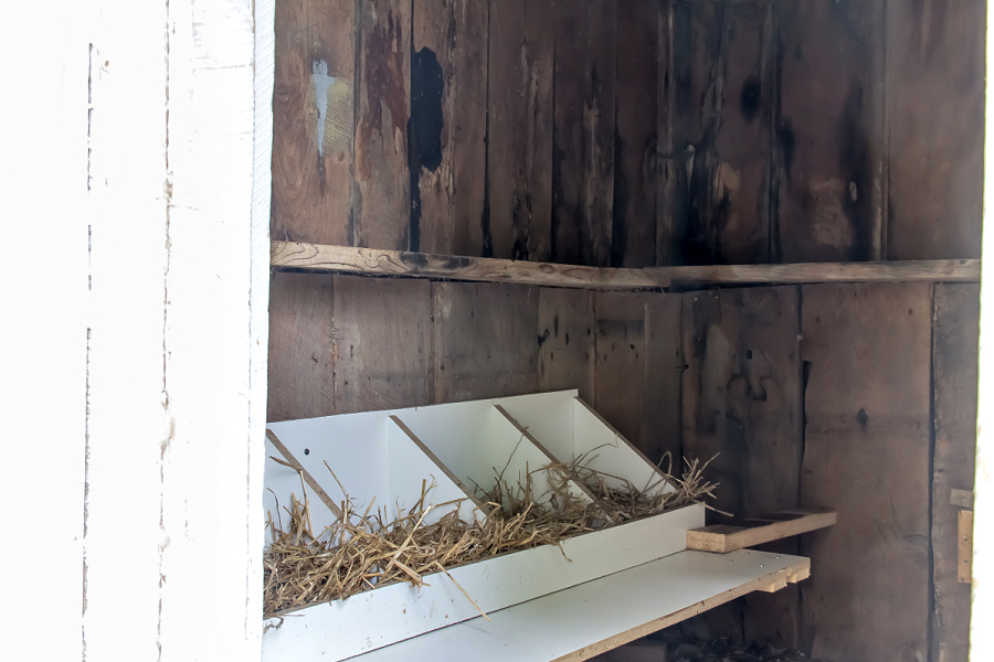 handmade nesting boxes for a chicken coop.
