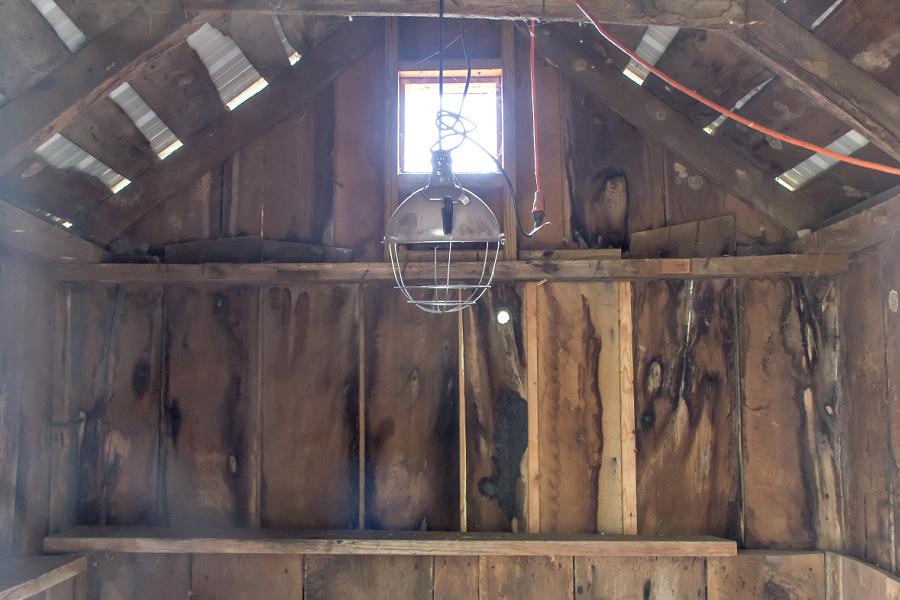 Inside a chicken coop