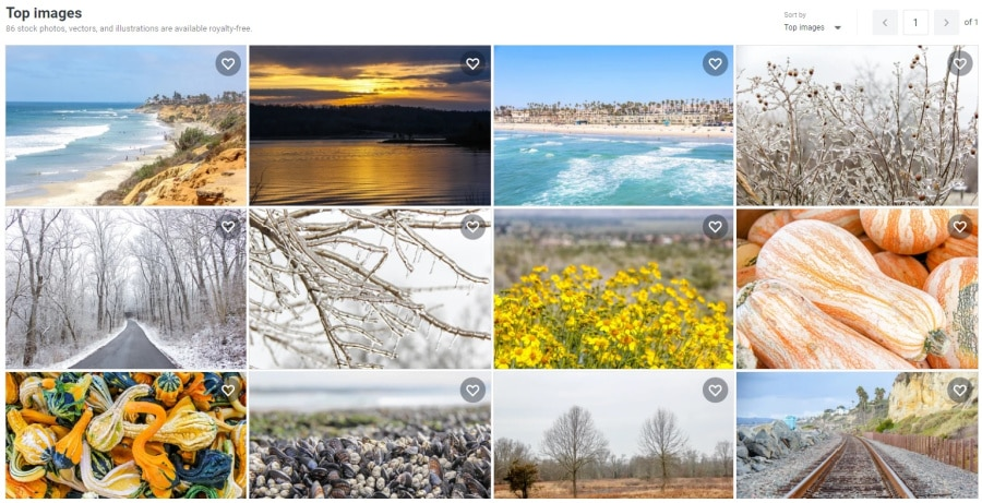 A screenshot of a Shutterstock portfolio with images available for download.