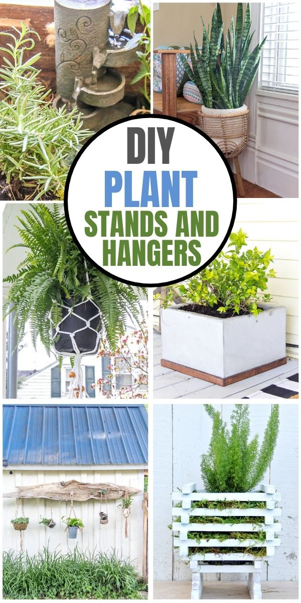 DIY plant stands and hangers Pinterest image